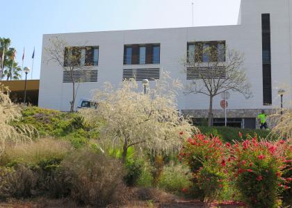 escuelas espacios ajardinados patios colegios
