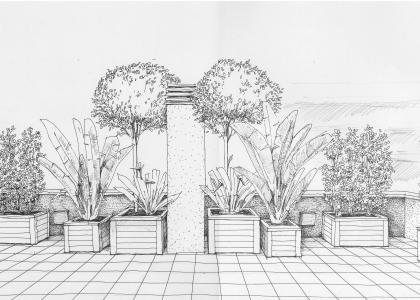 терраса в Барселоне цветочные ящики большие растения