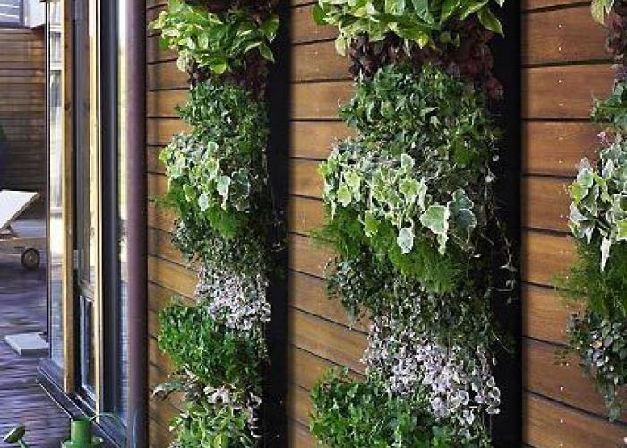 Jardin vertical en fachada