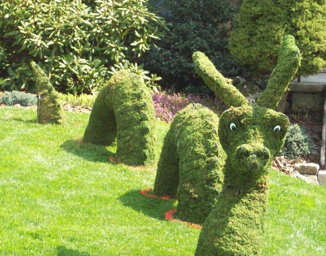 Лохнесское чудовище в саду