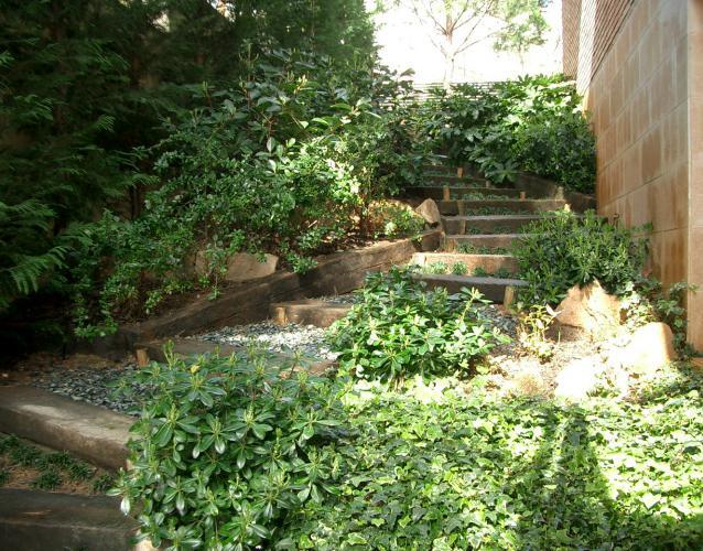 pequeño jardín escalera bajada sombrío