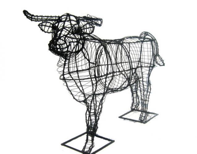 каркас буйвола