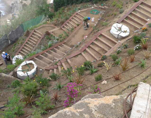 Construcción y plantacion de espacios y jardines