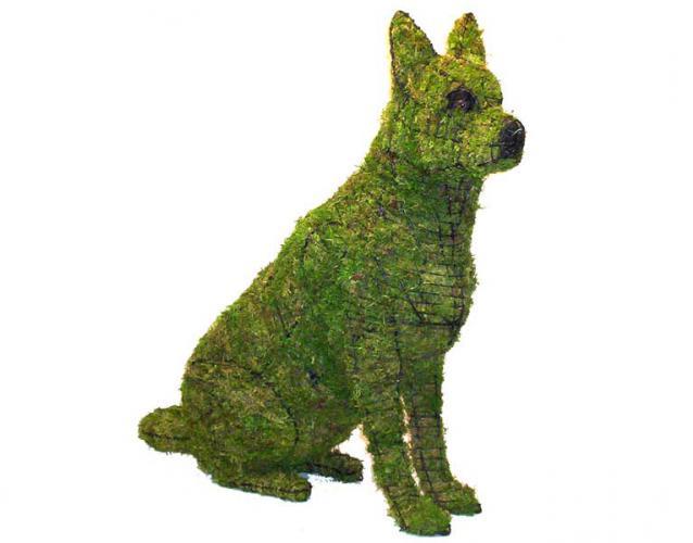 немецкая овчарка фигуры собак всех пород