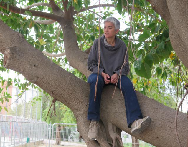 enseñar a los niños y adultos escalar árboles