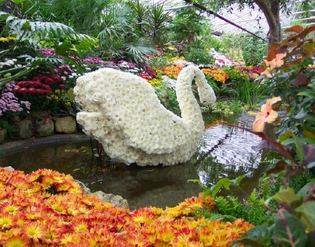 декорации для свадьбы банкета пруд лебедь из цветов