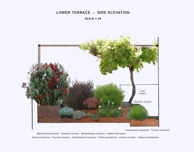 terraza jardineras corten jardín mediterráneo gramíneas decorativas