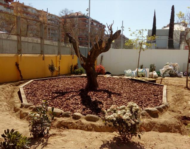 proyecto CEIP Cavall Bernat Barcelona patio infantil