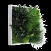 cuadro vegetal vertical